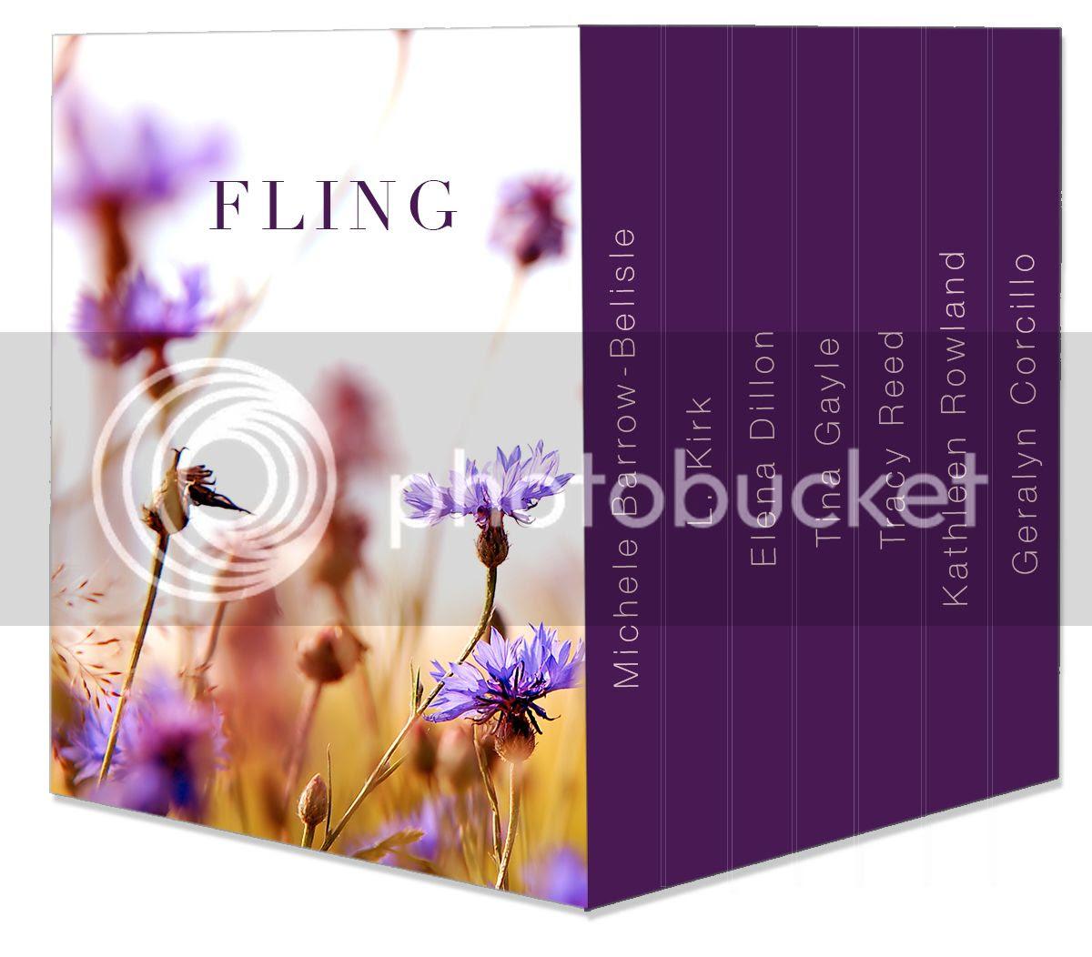 Fling BoxSet photo fling_box_set_mockup_v5_zps2ldnlg96.jpg