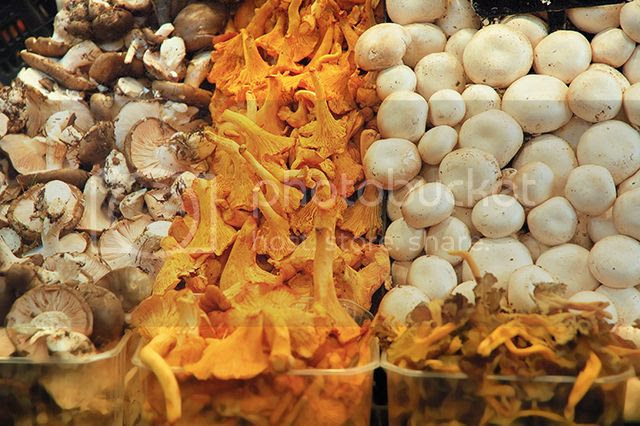 Bolets or Mushrooms at La Boqueria, Barcelona, Spain  [enlarge]