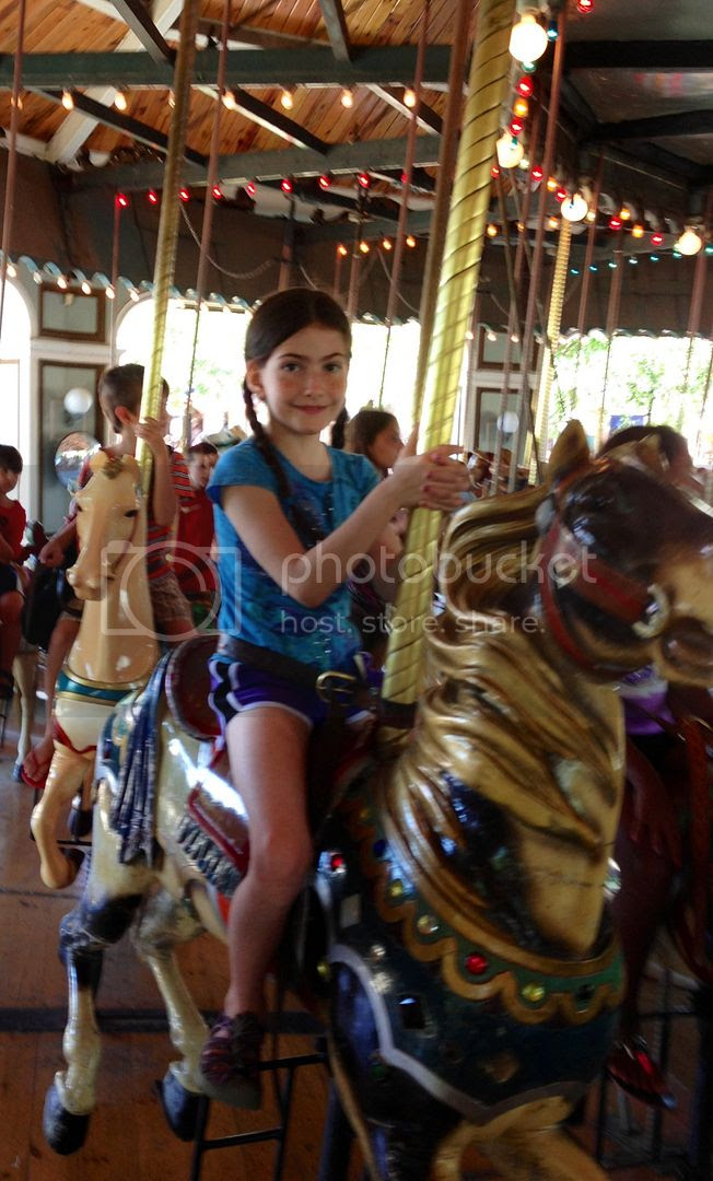 8/27/13 All that is good photo SusanBurkeCarousel.jpg