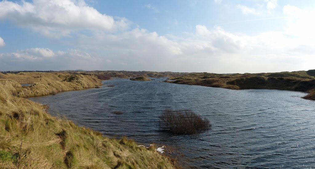 Flooded Dunes, Kenfig NNR