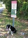 Dejan a un pitbull atado a un irónico letrero en la carretera con la nota más triste del mundo