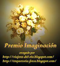 Premio Imaginación