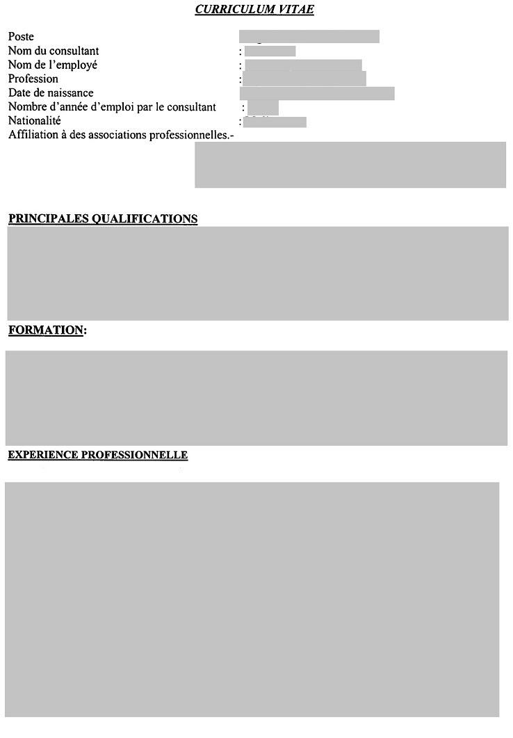 Resume Format: Modele De Cv Vierge A Imprimer