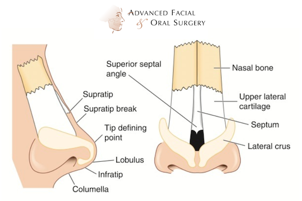 Rhinoplasty Advanced Facial And Oral Surgery