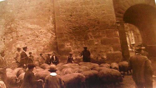 Cerdos en Bisagra. The Hispanic Society of America. Foto Anna M. Christian, 1915