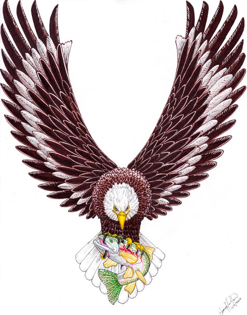 native american bird