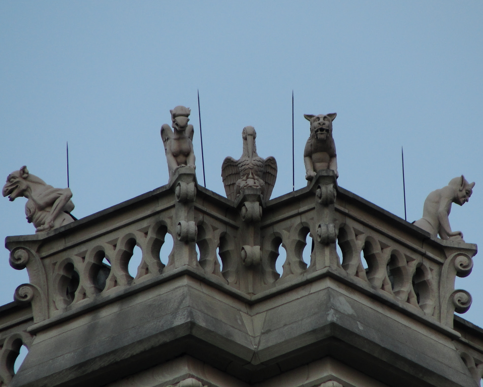 gargoyles atop The Cathedral Basilica of the Assumption in Covington, KY.  Twenty-six gargoyles to be exact, all carved in Italy