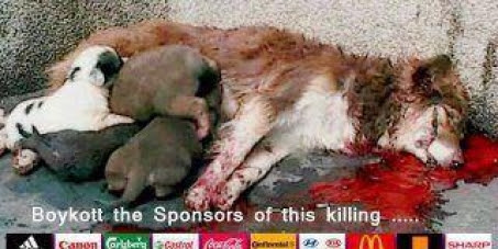 Pelo julgamento do governo ucraniano pela morte de milhares de animais