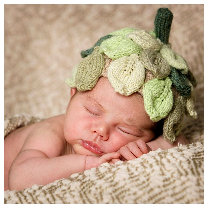 Baby portraits by phil lynch photographer