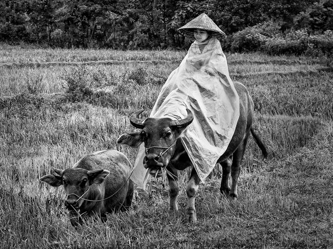 https://cdn.trangcongnghe.com/uploads/posts/2017-10/huong-sac-viet-nam-bon-chu-lang-que-viet-nam-moc-mac-gian-di-ma-than-thuong-qua-doi_3.png