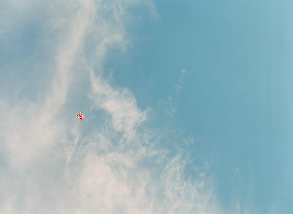 2012_0413_MtVernonTulipsPt1_04.jpg
