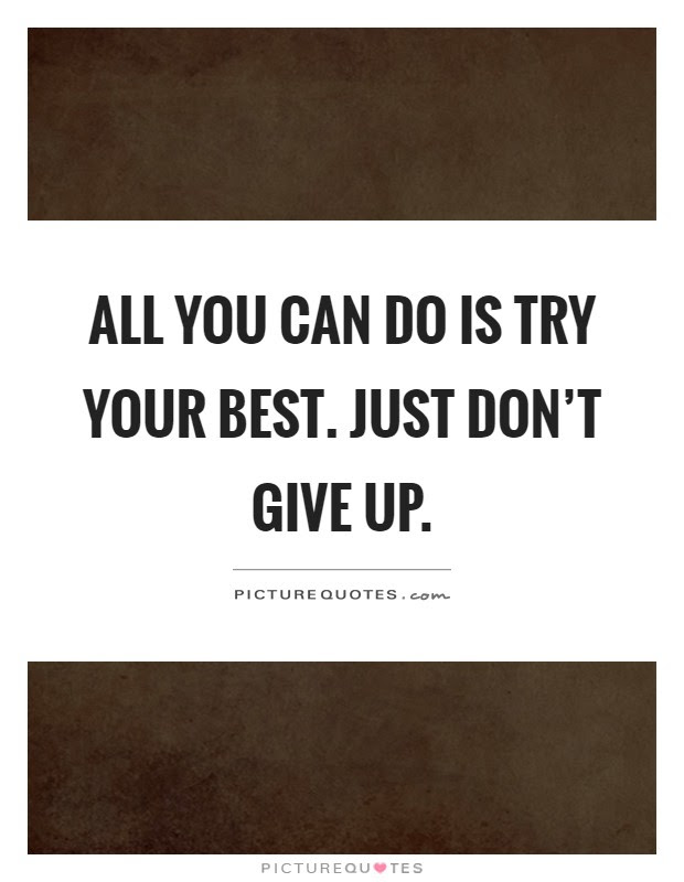 All You Can Do Is Try Your Best Just Dont Give Up Picture Quotes
