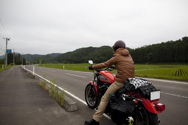 Harley Davidson XL 883R 039
