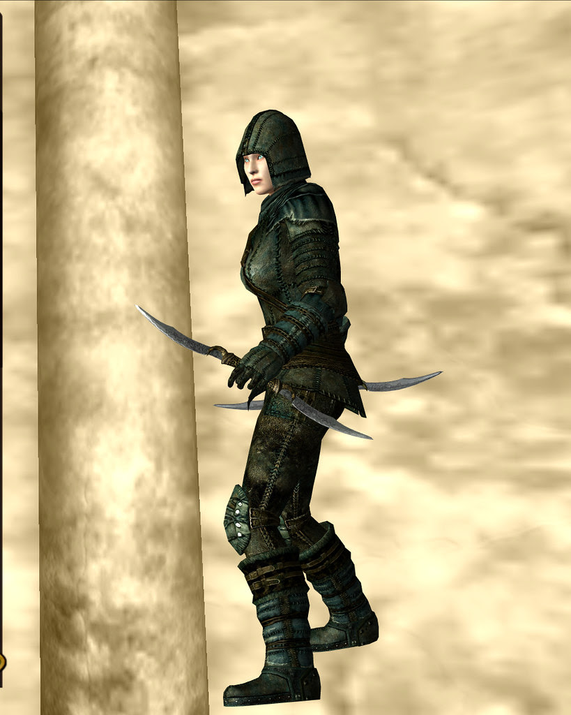 leather armour - camouflage 02