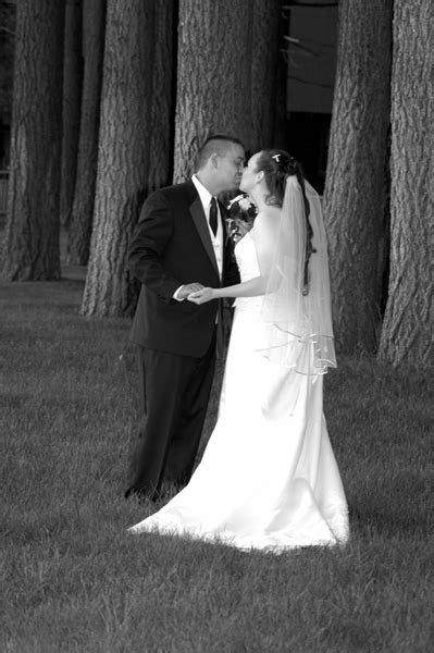 Kissing Under Trees   Alpenglow Weddings