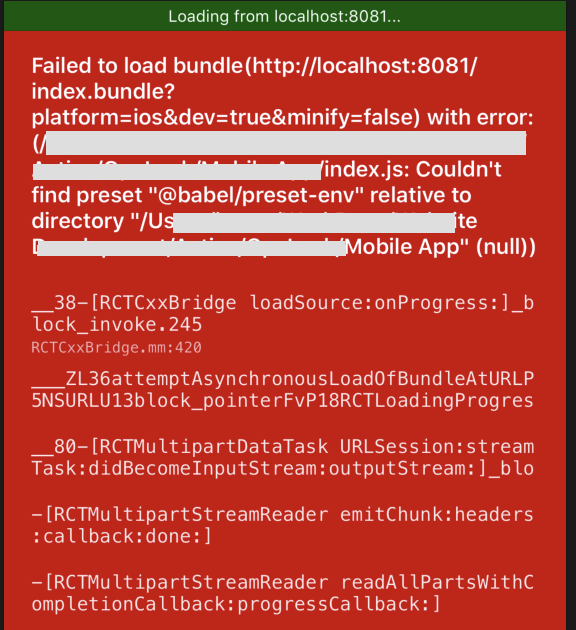 Bundlejs error on release build in Xcode (react-native)
