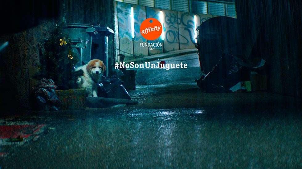 Resultado de imagen de campaña affinity los perros no son juguetes