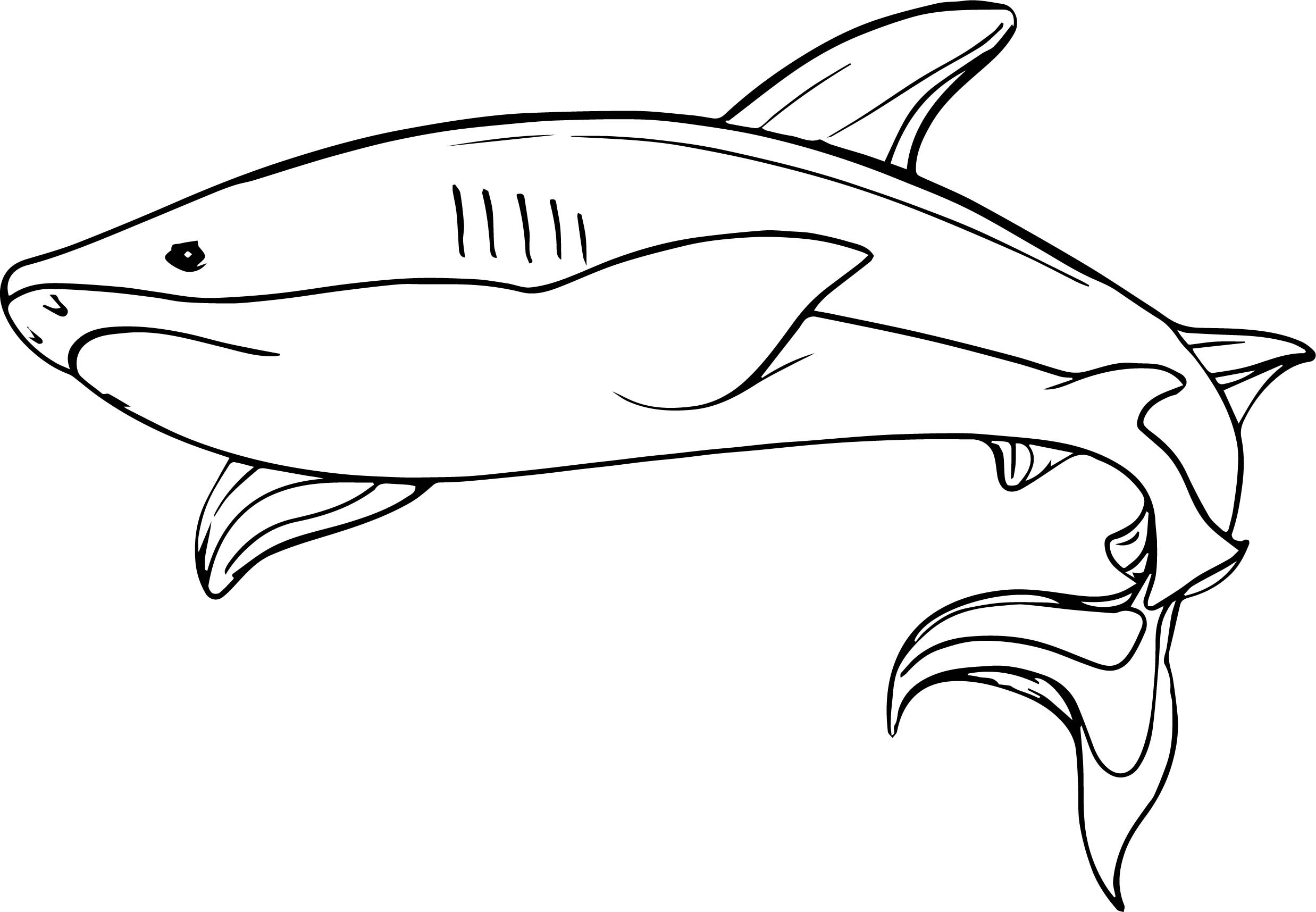 Underwater Shark Coloring Page | Wecoloringpage.com