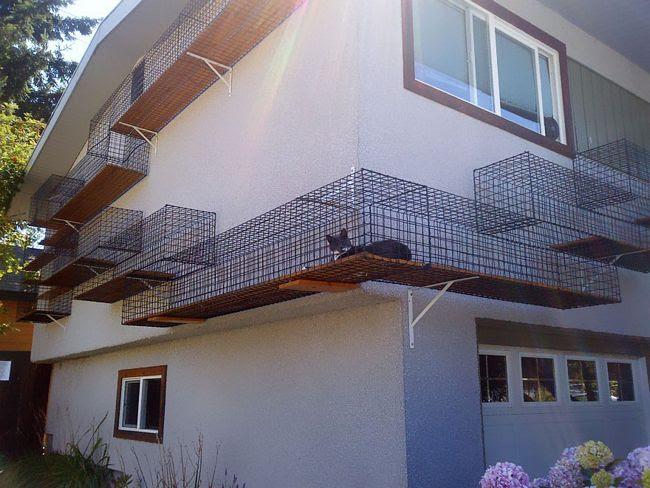 móveis-para-gatos-22