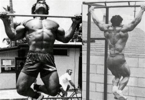 top benefits  pull ups fitnessonsteroidscom