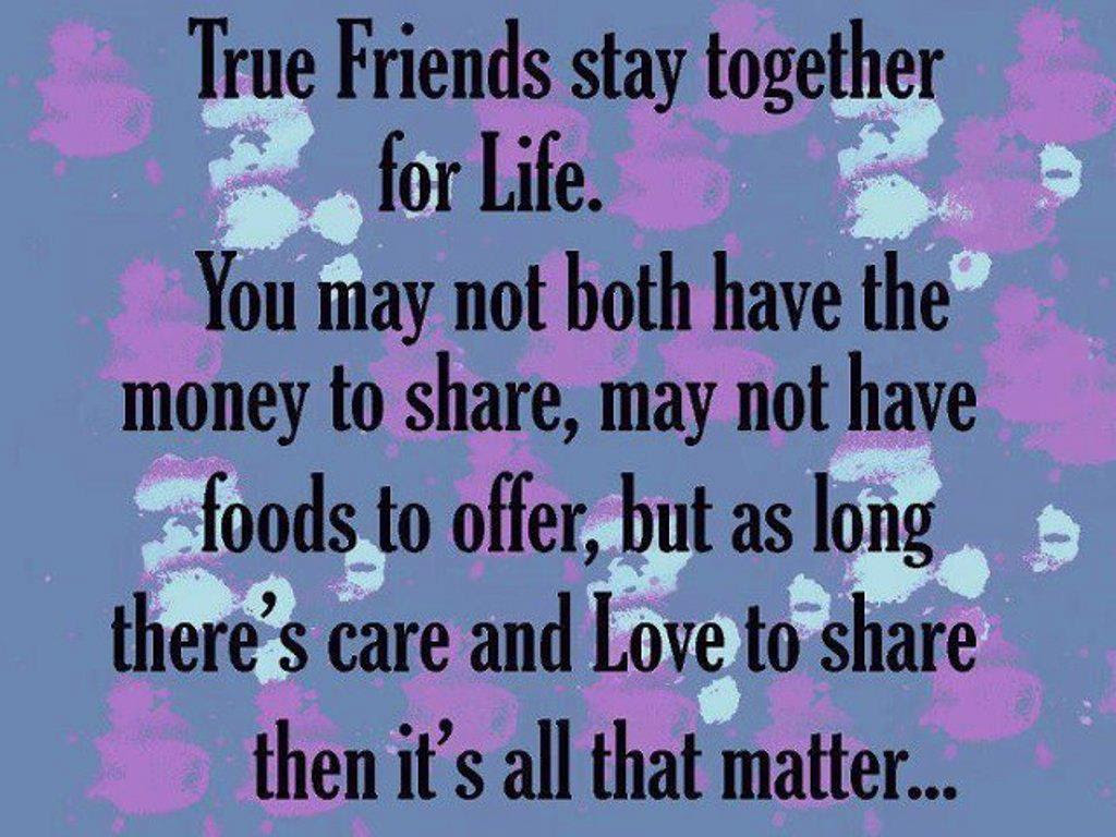 Cute Best Friendship Quotes In Hindi Archidev