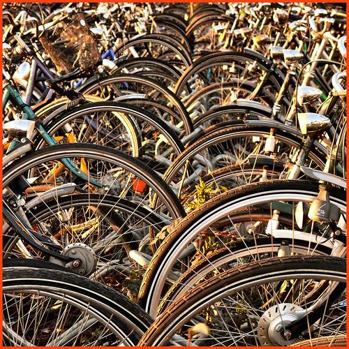 Bay State Bike Week