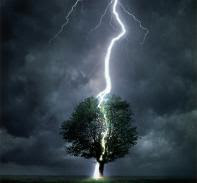 lightning Man Actually Struck by Lightning for Swearing to God picture
