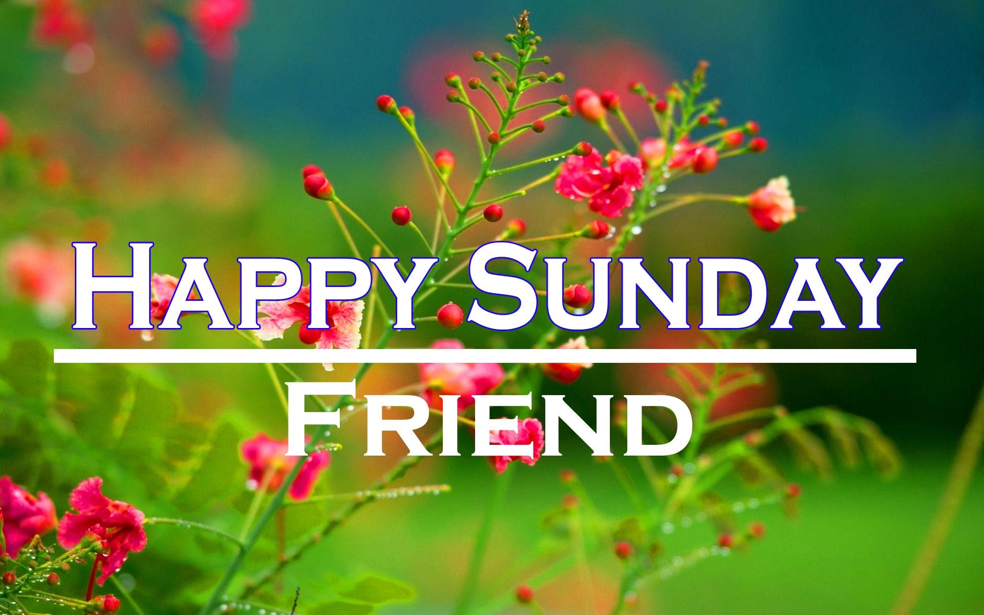 Sunday Good Morning Images 3 1