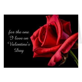 One True Love Valentine's Day Greeting Card