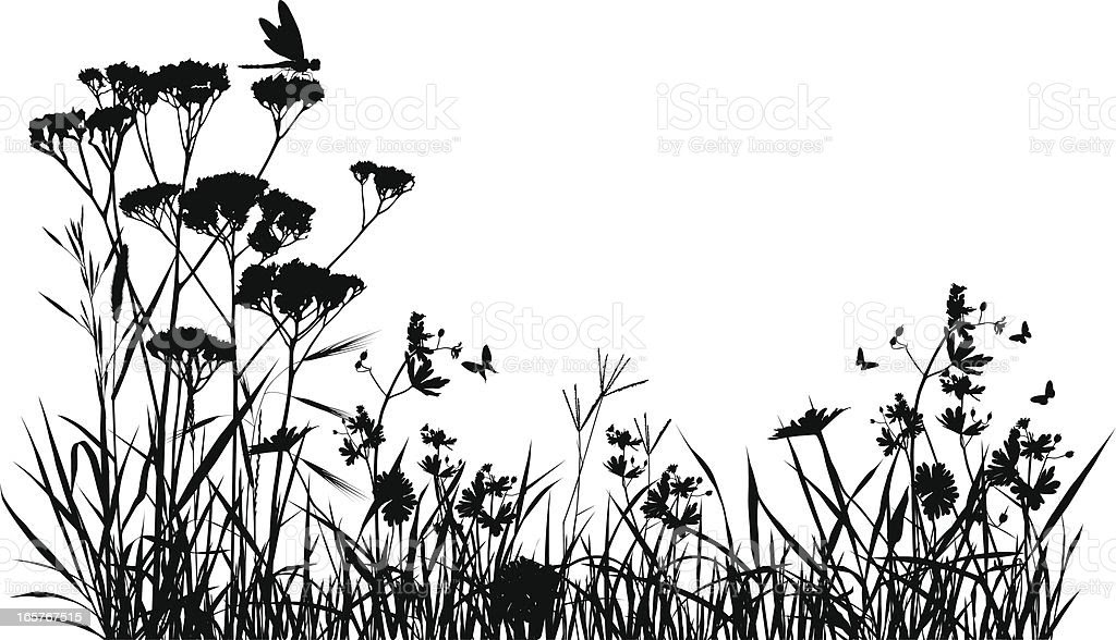 Meadow Silhouette stock vector art 165767515  iStock