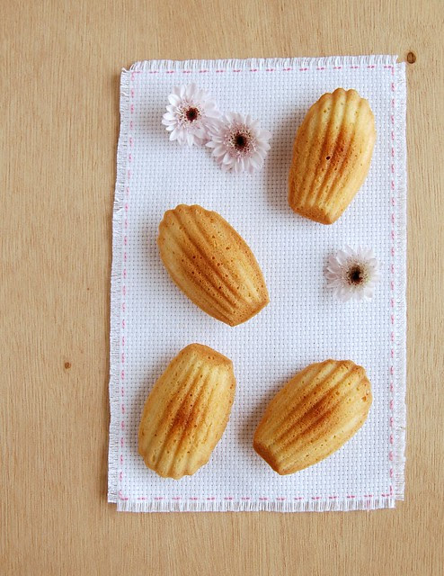 Orange blossom madeleines / Madeleines de água de flor de laranjeira