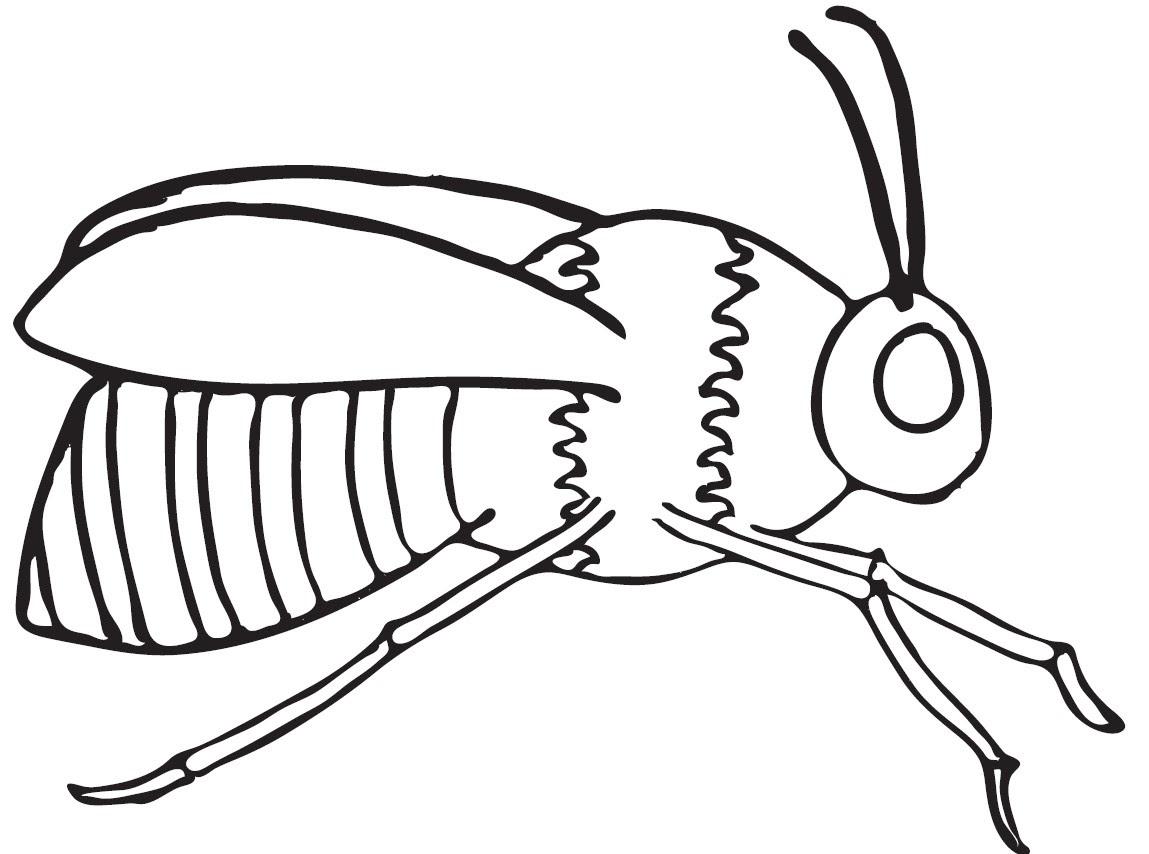 Arı Resmi Boyama