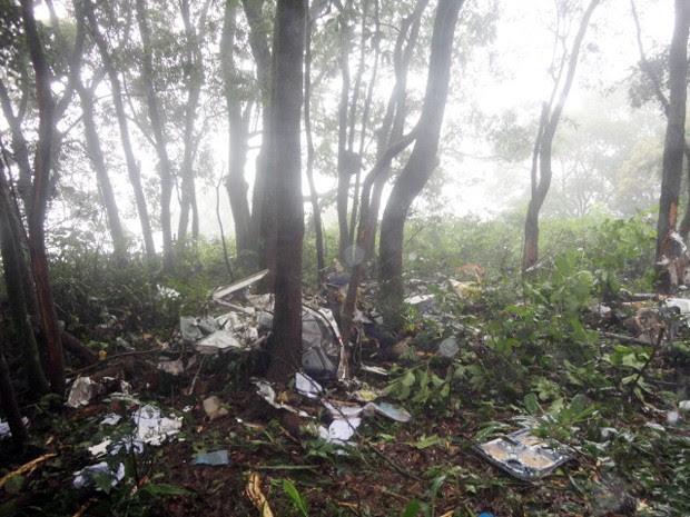 Segundo Corpo de Bombeiros, aeronave caiu entre árvores em Bueno Brandão (Foto: Polícia Militar)