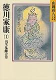 徳川家康(山岡荘八)