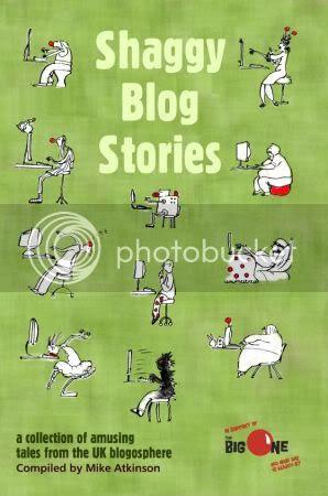 Shaggy Blog Stories