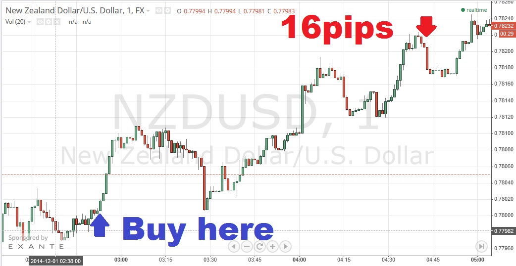 1 minute daily - The Copy Forex
