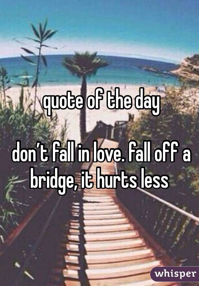 Quote Of The Day Dont Fall In Love Fall Off A Bridge It Hurts Less