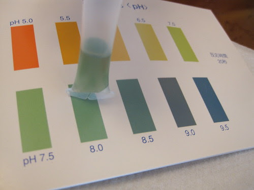 pH test for Beijing tap water.