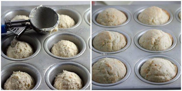 Meyer Lemon Ginger Muffin 1