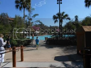 photo 313848_652677986441_1238015494_n.jpg