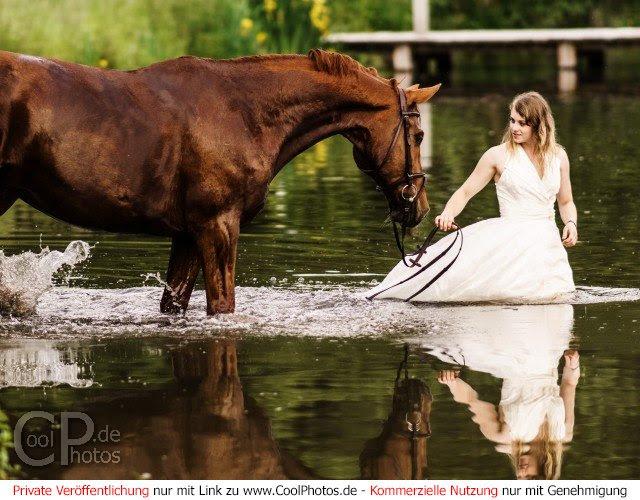 Spiele Mit Pferden Kostenlos