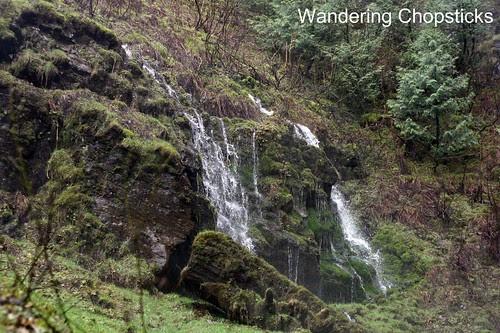 8 Latourell Falls (Winter) - Columbia River Gorge - Oregon 11