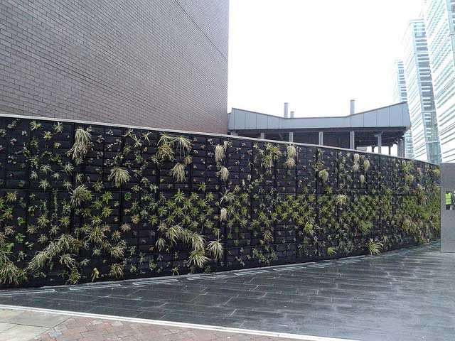 Living Walls Improve Indoor Air Quality, Save Energy and Add Life