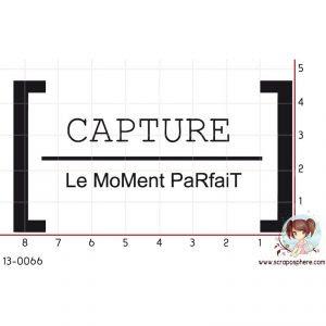 tampon-capture-le-moment-parfait-par-laetitia67