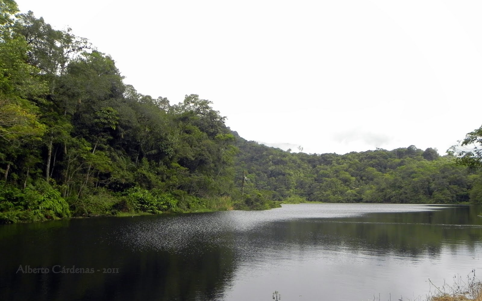 Resultado de imagen para laguna negra rio negro venezuela