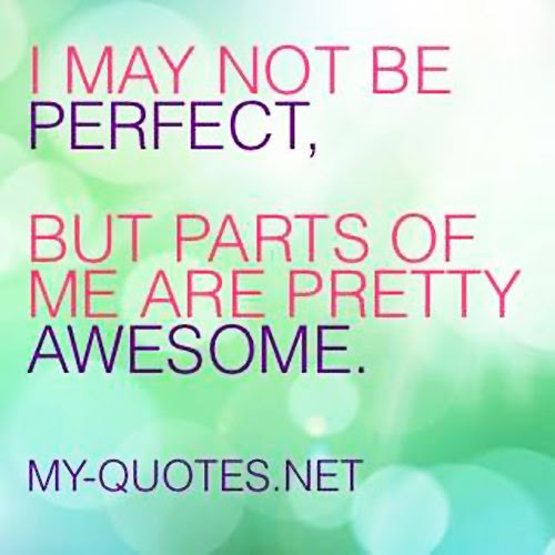 I May Not Be Perfect My Quotesnet