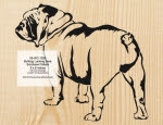 Bulldog Looking Back Scrollsaw Woodworking Pattern - fee plans from WoodworkersWorkshop® Online Store - bulldogs,pets,animals,yard art,painting wood crafts,scrollsawing patterns,drawings,plywood,plywoodworking plans,woodworkers projects,workshop blueprints