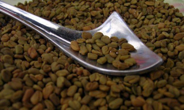 230-plantas-medicinales-mas-efectivas-y-sus-usos-alholva-semillas