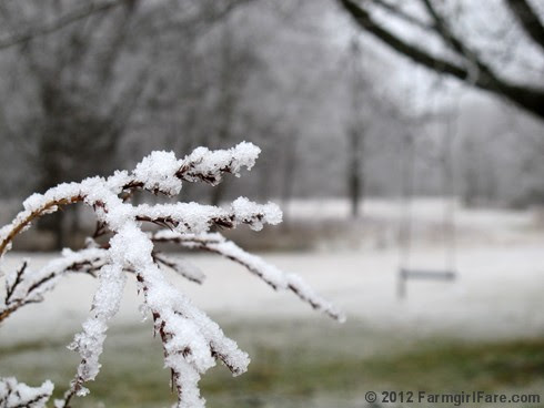 Snowy farm morning 7 - FarmgirlFare.com