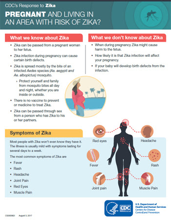 Infographic: Pregnant and living in an area with Zika?